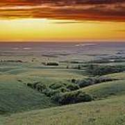 View From The Cypress Hills Art Print