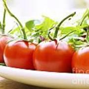 Vine Tomatoes On A Salad Plate Art Print