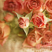 Vintage Peaches N Creme Spray Roses Art Print by Susan Gary
