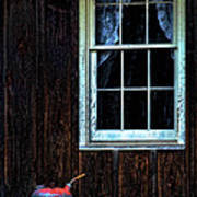 Vintage Porch Window And Gas Can Art Print