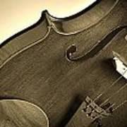 Violin Isolated Art Print