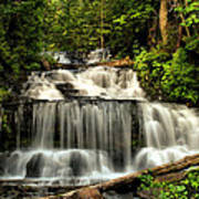 Wagner Falls In Summer  Art Print