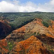 Waimea Canyons Art Print