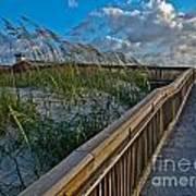 Walkway To The Beach Art Print