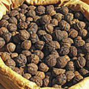 Walnuts In A Basket Art Print