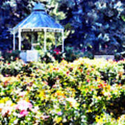 War Memorial Rose Garden  3 Art Print