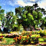 War Memorial Rose Garden  4 Art Print