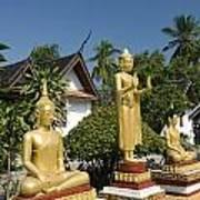 Wat Mai Buddhas Art Print