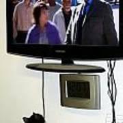 Watching Tv Art Print