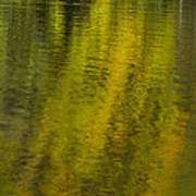 Water Reflection Abstract Autumn 1 A Art Print