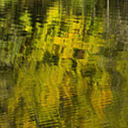 Water Reflection Abstract Autumn 1 E Art Print