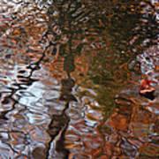 Water Serenade Art Print