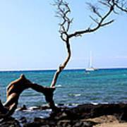 Water Sports In Hawaii Art Print