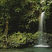 Waterfall And Emerald Pool In A Lush Art Print