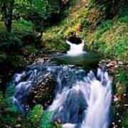 Waterfall In The Woods, Ireland Art Print