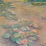 Waterlilies At Dusk Art Print by Rita Bentley