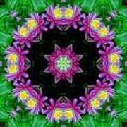 Waterlily Kaleidoscope Art Print