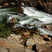 Waters Edge Glen Alpine Creek Art Print