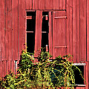 Weathered Broken Red Barn Window Of New Jersey Art Print