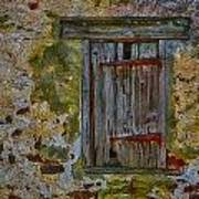 Weathered Vibrancy Art Print