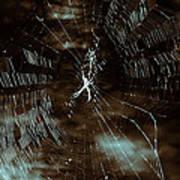 Web Glitter Art Print