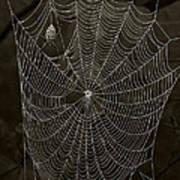 Web Master Art Print