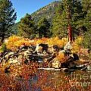 West Fork Of The Carson River Fall Colors Art Print by Scott McGuire