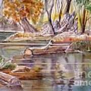 Wet Coast Art Print