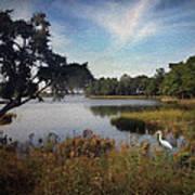Wetlands - Oil Painting Effect Art Print