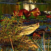 What Lurks On The Swamp Art Print