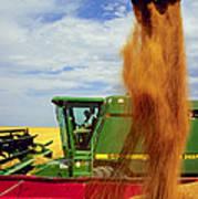 Wheat Harvest Art Print