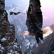 Where Eagles Dare Art Print