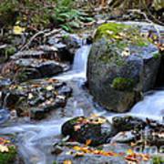 Whisketown Stream In Autumn Art Print