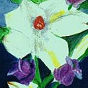 White And Purple Delight Art Print