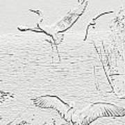 White Birds Art Print