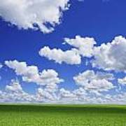 White Clouds In The Sky And Green Meadow Art Print