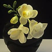 White Freesias In Black Vase Art Print