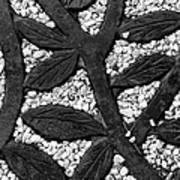White Gravel And Wrought Iron Art Print