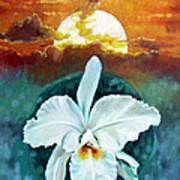 White Life On Blue Planet Art Print