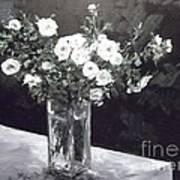 White Ramblers  Art Print