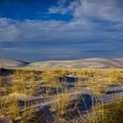 White Sands Golden Grass Art Print