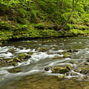 Whitewater River Spring 8 A Art Print