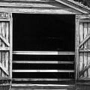 Who Opened The Barn Door Art Print by Teresa Mucha