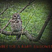 Whoooo Wishes  You A Happy Halloween - Greeting Card - Owl Art Print