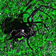 Wicked Widow - Green Art Print