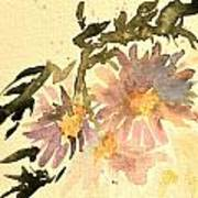 Wild Asters Aged Look Art Print
