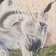 Wild Blush Art Print