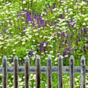 Wild Flowers On A Meadow Art Print by Jorg Greuel
