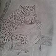 Wild Predator Art Print