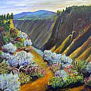 Wild Rivers New Mexico Art Print